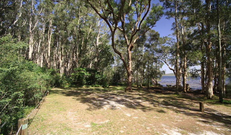Shelly Beach campground, Myall Lakes National Park. Photo: Shane Chalker