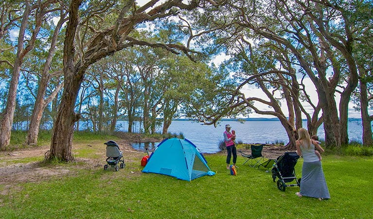 White Tree Bay campground, Myall Lakes National Park. Photo: John Spencer/DPIE