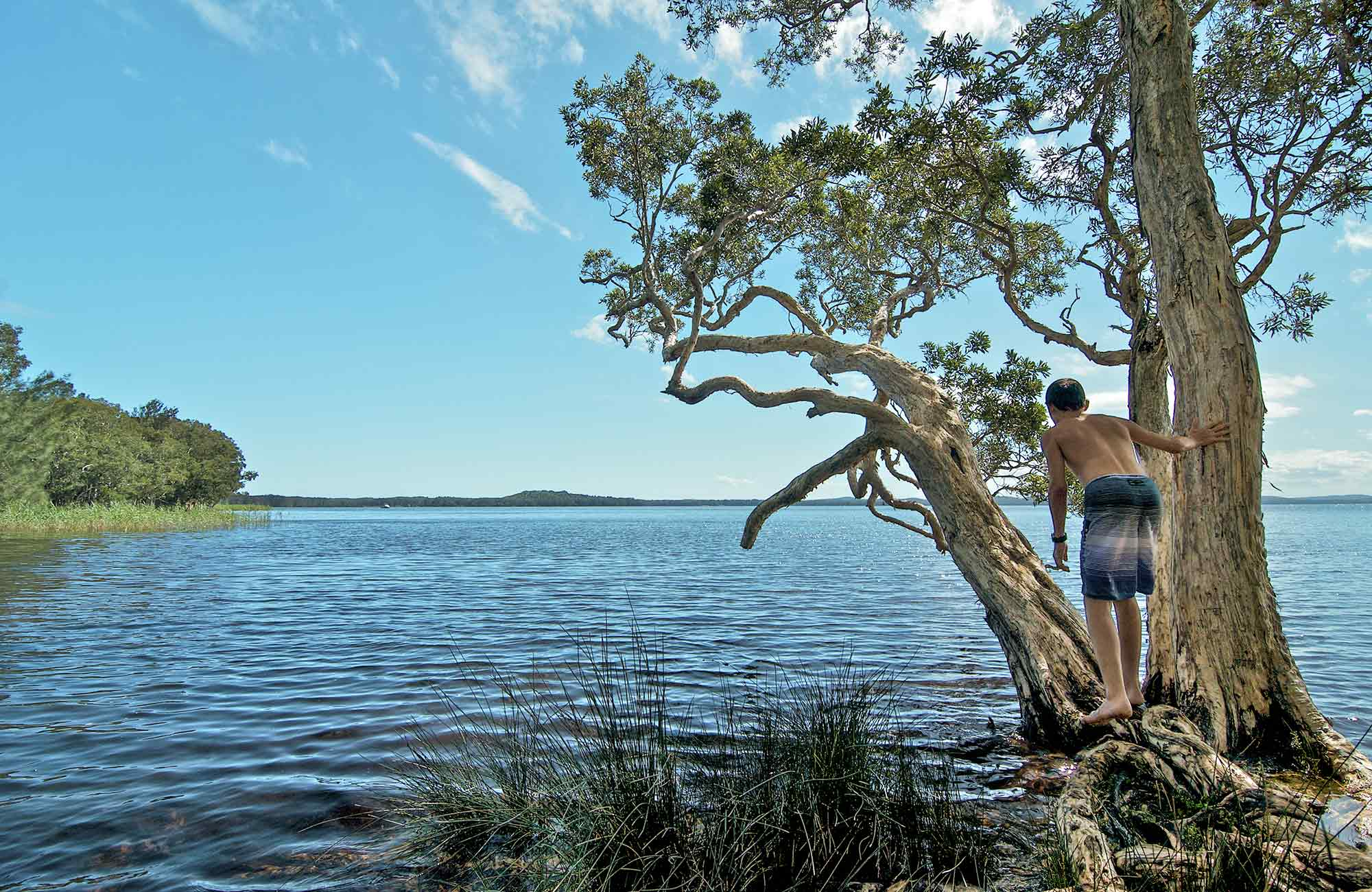 Wells campground, Myall Lakes National Park. Photo: John Spencer/NSW Government