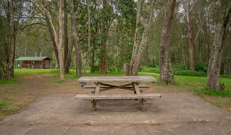 A picnic table with amenities block in the background at Violet Hill campground in Myall Lakes National Park. Photo: John Spencer © DPIE