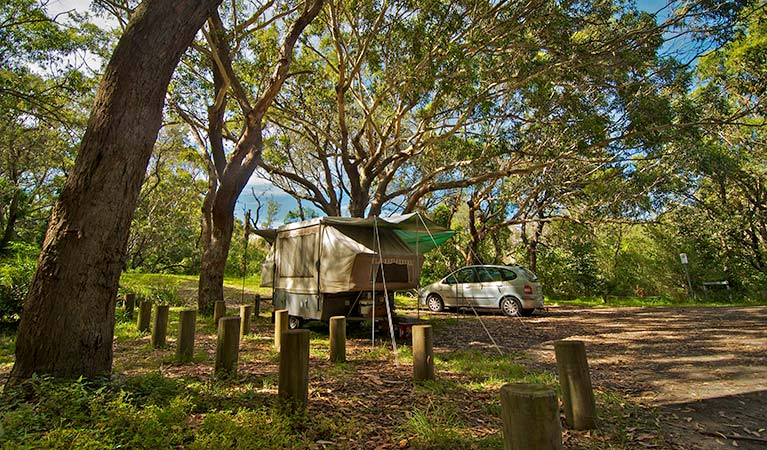 Yagon campground, Myall Lakes National Park. Photo: John Spencer/NSW Government