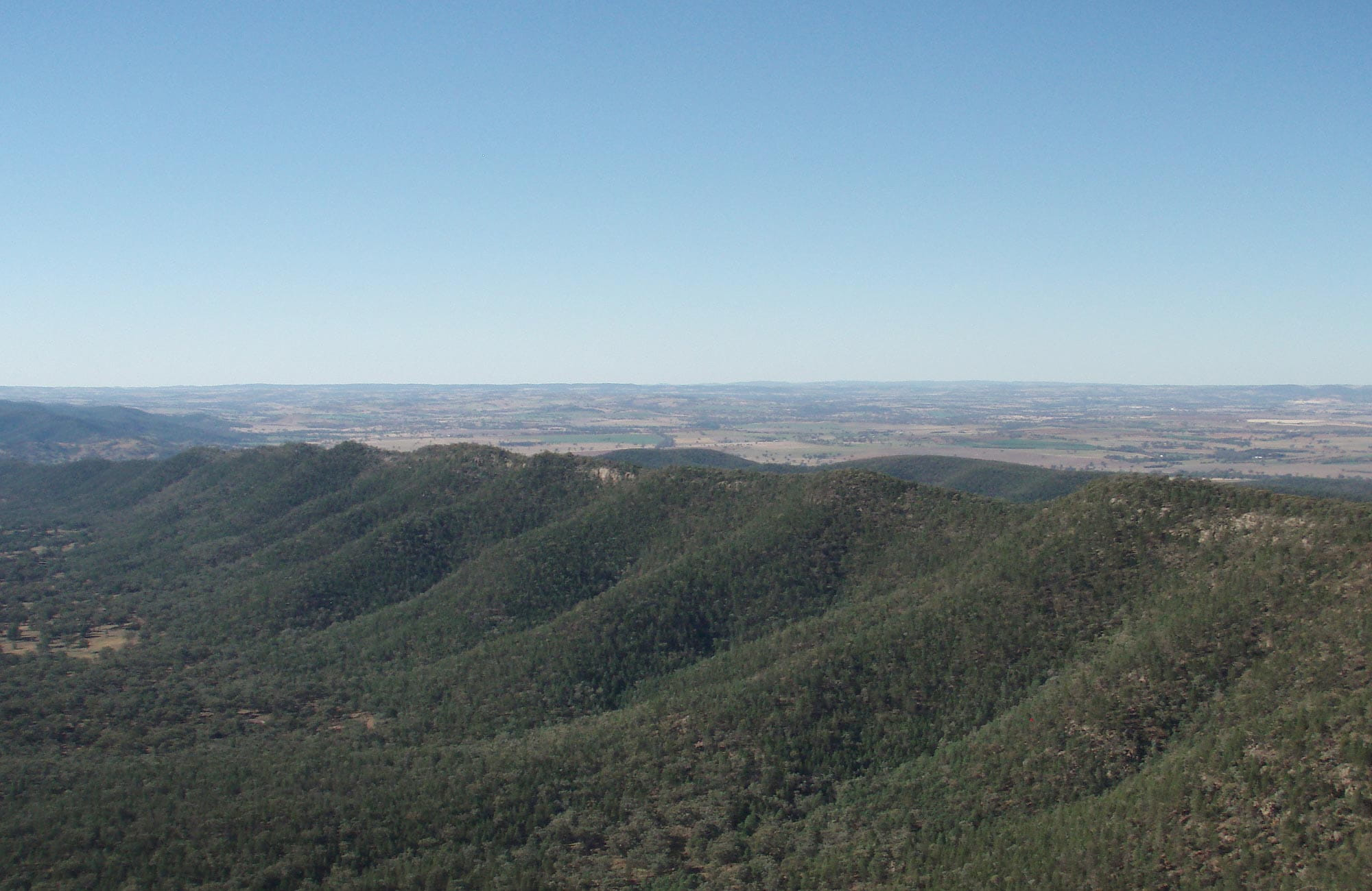 Mt Nangar hiking track, Nangar National Park. Photo: A Lavender/NSW Government