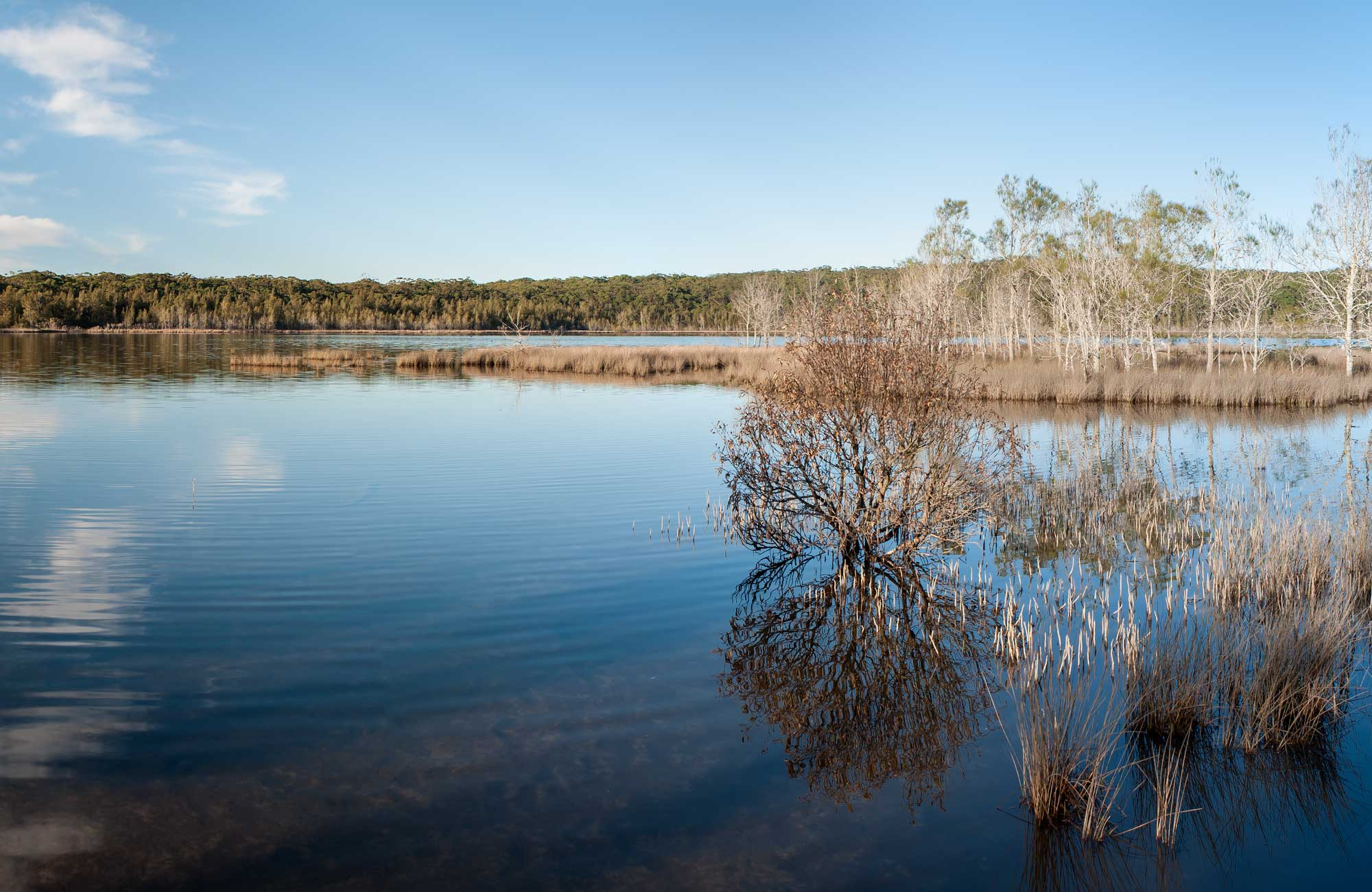 Pattimores Lagoon, Narrawallee National Park. Photo: Michael van Ewijk