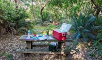 Conjola Beach picnic area, Narrawallee National Park. Photo: Michael van Ewijk