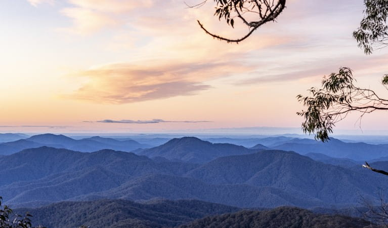Barbeque and picnic area at The Chalet, New England National Park. Photo: Robert Cleary/OEH