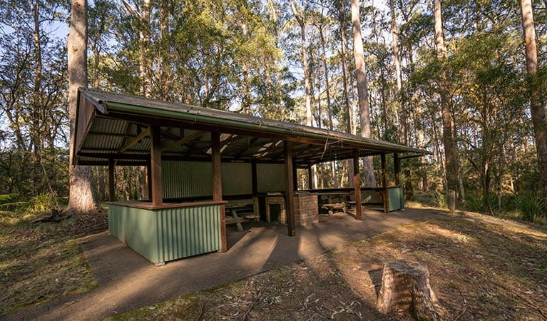 Barbecue shelter at Thungutti campground in New England National Park. Photo: John Spencer/OEH