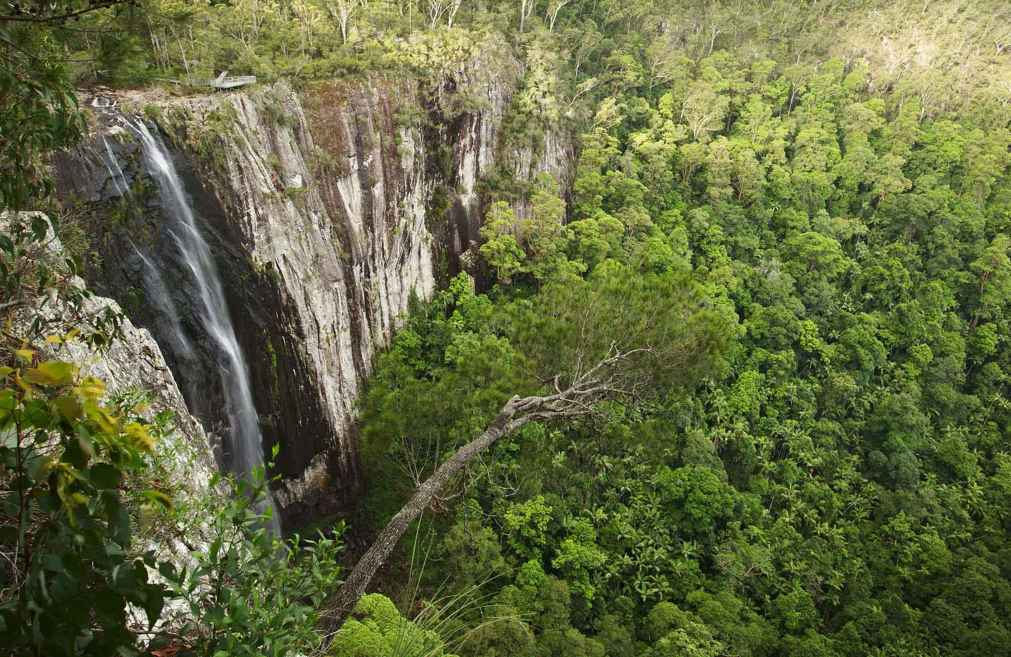 Minyon Falls, Nightcap National Park. Photo: Hamilton Lund