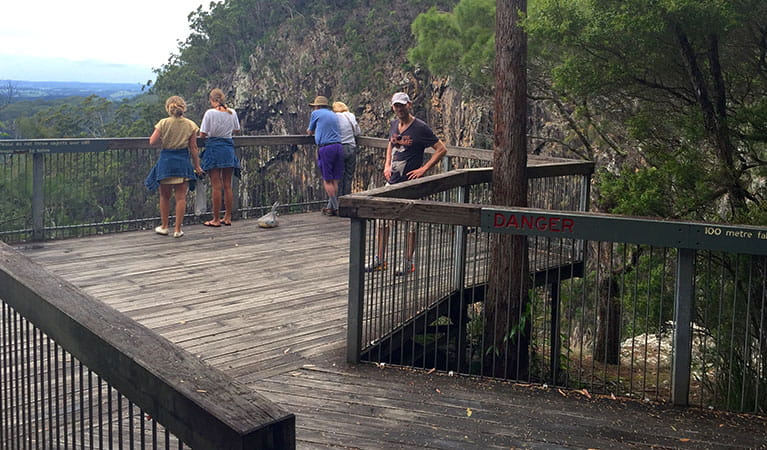The lookout platform at Minyon Falls. Photo: OEH/Natasha Webb