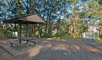 Minyon Grass picnic area, Nightcap National Park. Photo: B. McLachlan