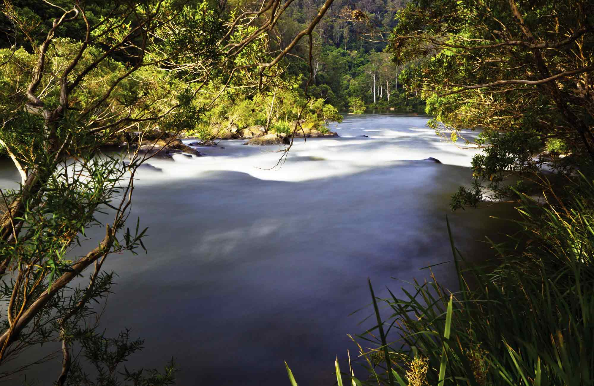 Nymboida River, Nymboi-Binderay National Park. Photo: Rob Cleary