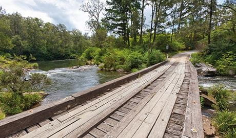 A timber single-lane bridge across a river in Nymboi-Binderay National Park. Photo: Robert Cleary & copy; Robert Clearly