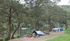 Platypus Flat campground, Nymboi-Binderay National Park. Photo: Rob Cleary
