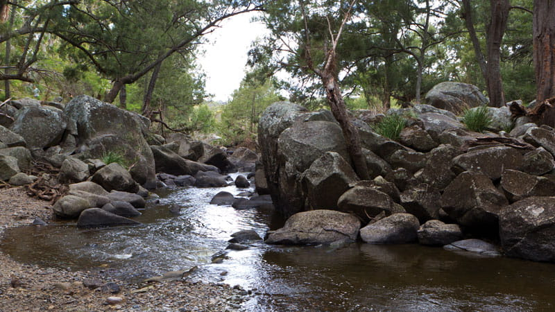 Gara Gorge, Oxley Wild Rivers National Park. Photo: Rob Cleary