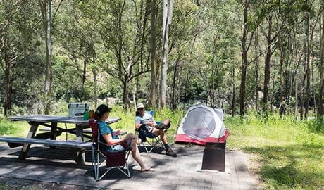 Halls Peak campground in Oxley Wild Rivers National Park. Photo: Leah Pippos © DPIE