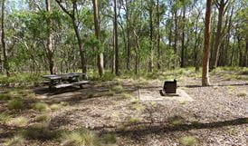 Long Point Campground, Oxley Wild Rivers National Park. Photo: Rob Cleary