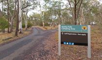 Apsley Falls Campground, Oxley Wild Rivers National Park. Photo: Rob Cleary/DPIE