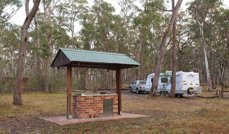 Barbecue and camping area in Apsley Falls campground, Oxley Wild Rivers National Park. Photo: Rob Cleary/DPIE