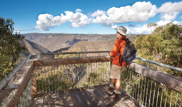 A person enjoying the view of the gorge at McDirtys lookout, Oxley Wild Rivers National Park. Photo: Rob Cleary