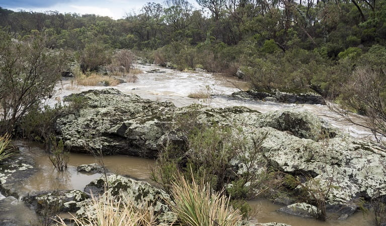 Salisbury waters, Oxley Wild Rivers National Park. Photo: Leah Pippos/DPIE