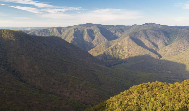 View over Oxley Wild Rivers National Park. Photo: Rob Cleary
