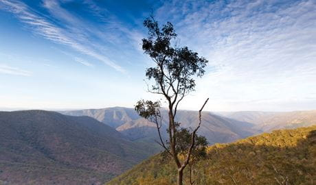View of the landscape of Oxley Wild Rivers National Park. Photo: Rob Cleary