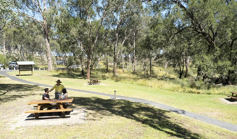 Picnickers chat with an NPWS staff member at Threlfall picnic area. Photo: Leah Pippos ©DPIE