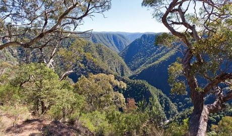 View from Tia Falls lookout. Photo: Rob Cleary