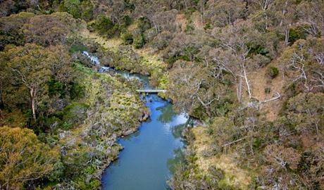 Tiara walking track, Tia Falls, Oxley Wild River National Park. Photo: Gerhard Koertner/NSW Government