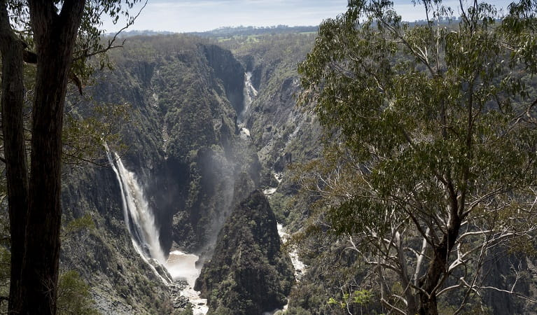 Wollomombi and Chandler Falls, Oxley Wild Rivers National Park. Photo: Leah Pippos/DPIE
