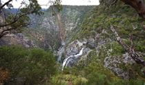 Wollomombi Gorge and waterfall in Oxley Wild Rivers National Park. Photo: Rob Cleary