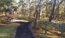 A picnic shelter among trees with a sign to Tia Falls lookout at Tia Falls campground, Oxley Wild Rivers National Park. Photo: Robert Cleary/DPIE