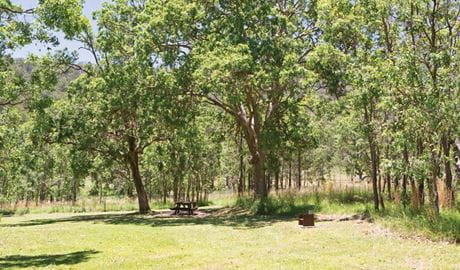 Youdales Hut campground and picnic area in Oxley Wild Rivers National Park. Photo: Rob Cleary/DPIE