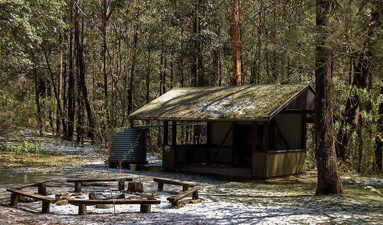 Heartbreak campground, Parr State Conservation Area. Photo: Susie Davis/NSW Government