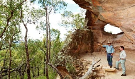 Guided tour, Pilliga National Park. Photo: Rob Cleary