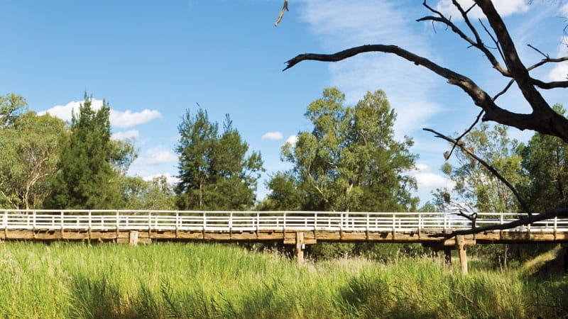 Bridge in Pilliga National Park. Photo: Rob Cleary