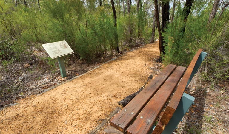 Bench and sign on the Sandstone Caves walking track. Photo: Rob Cleary