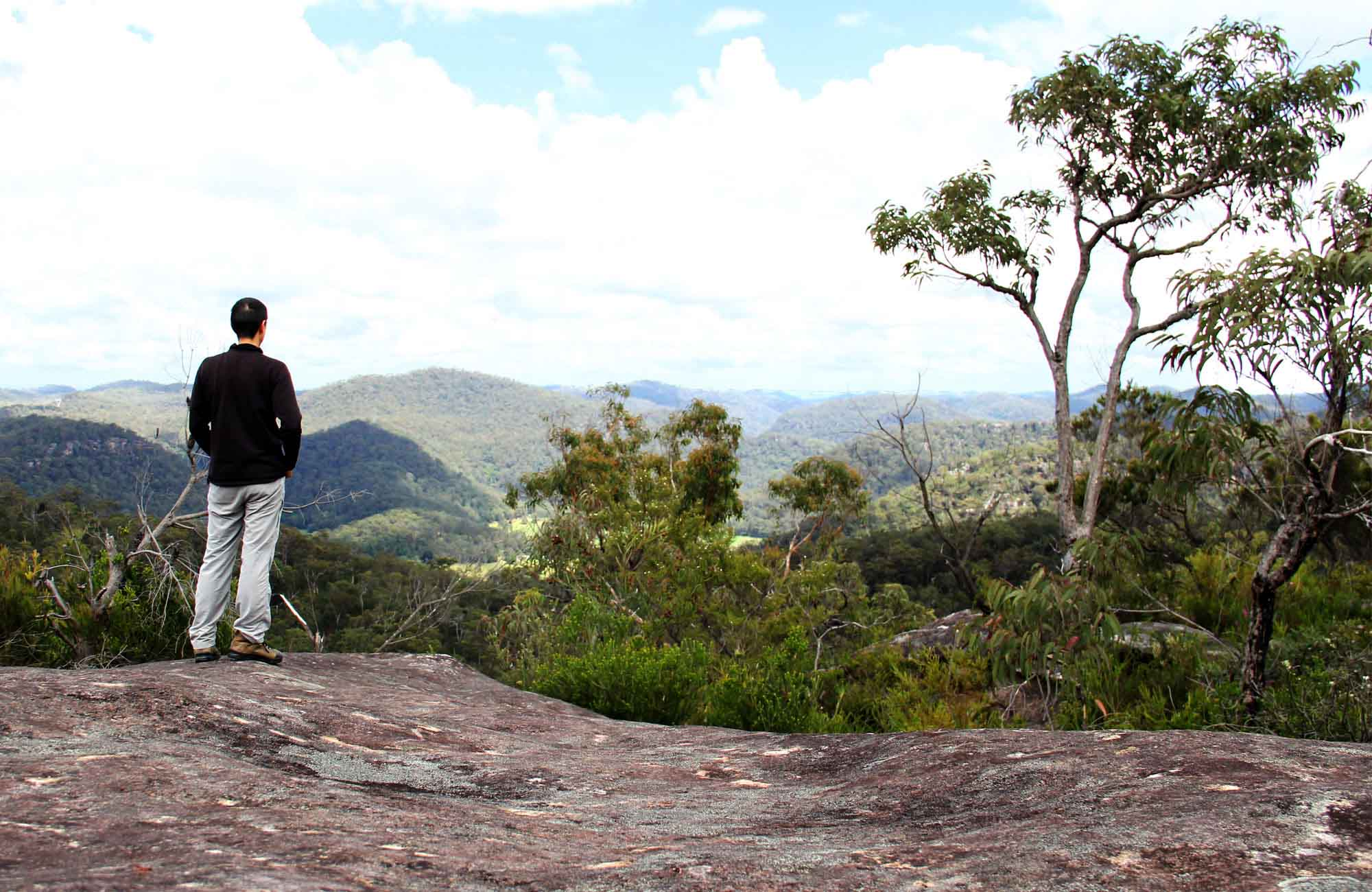 Man standing on a lookout, Popran National Park. Photo: John Yurasek