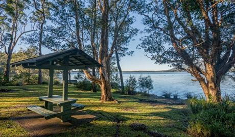 Queens Lake picnic area, Queens Lake Nature Reserve. Photo: John Spencer