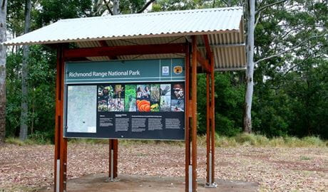 Cambridge Plateau Picnic Area, Richmond Range National Park. Photo: J Atkins/NSW Government