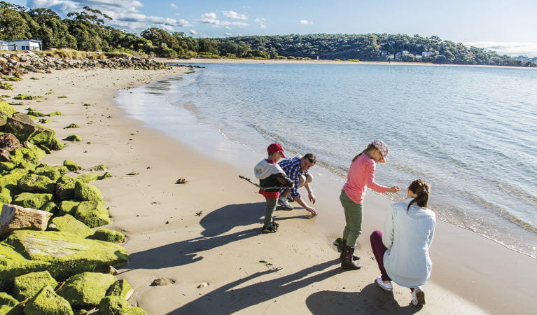A family takes a walk along the beach next to Bonnie Vale picnic area in Royal National Park. Photo: Simone Cottrell/OEH