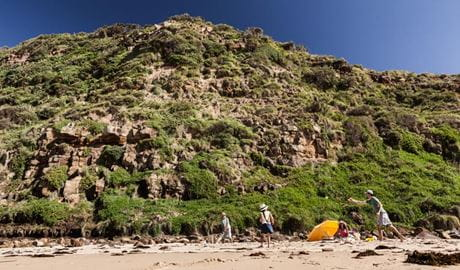 Garie Beach, Royal National Park. Photo: David Finnegan/NSW Government