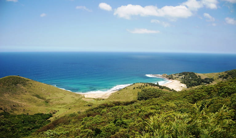 Governor Game lookout, Royal National Park. Photo: UDU/NSW Government
