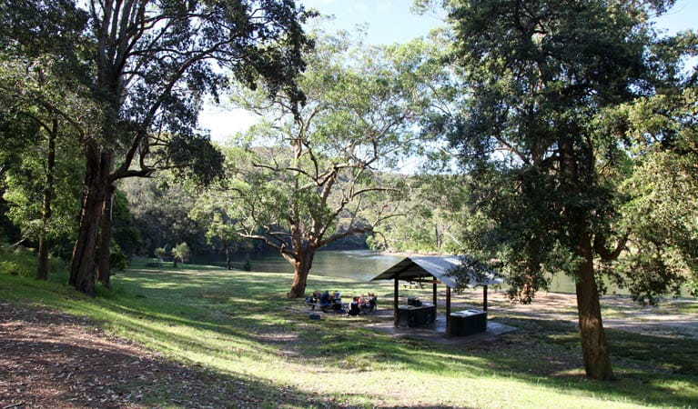 Reids Flat picnic area, Royal National Park. Photo: Andy Richards/NSW Government