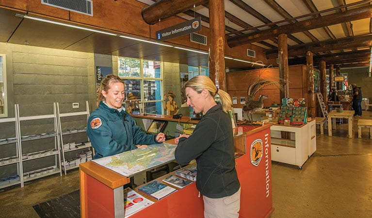 An NPWS staff member and a visitor looking at a map in Royal National Park Visitor Centre, Royal National Park. Photo: John Spencer/DPIE