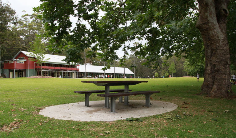 A picnic table under a tree outside Royal National Park Visitor Centre, Royal National Park. Photo: Andy Richards