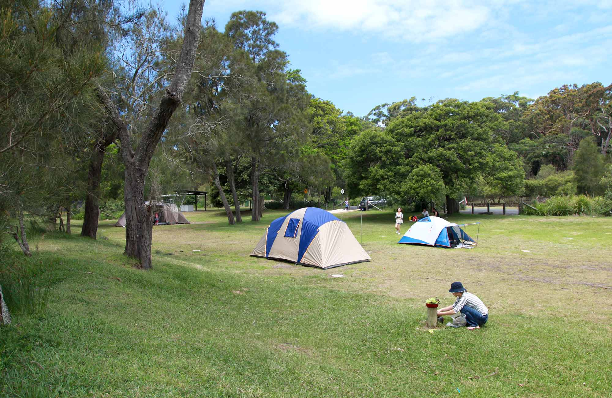 Bonnie Vale Campground, Royal National Park. Photo: Andy Richards