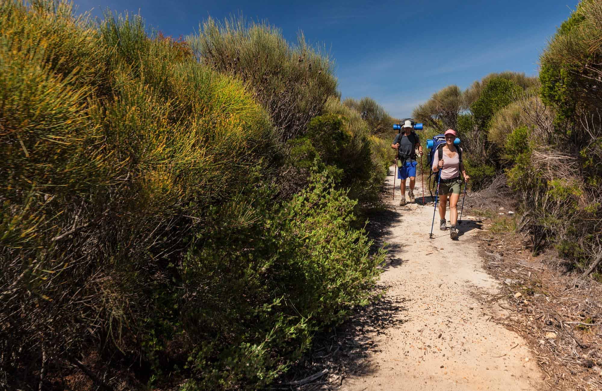 Coastal Walk, Royal National Park. Photo: David Finnegan