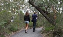 Two people walking on the Bungoona Path. Photo: Andy Richards