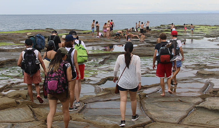 The Figure Eight Pools rock platform can become very crowded. Photo: David Croft/OEH