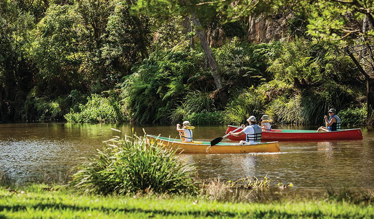 Family canoeing near Audley in Royal National Park: David Finnegan/OEH
